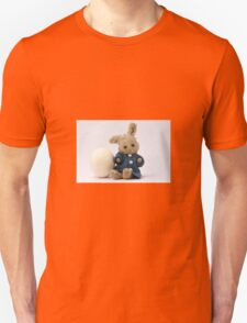 Easter Egg and Bunny T-Shirt