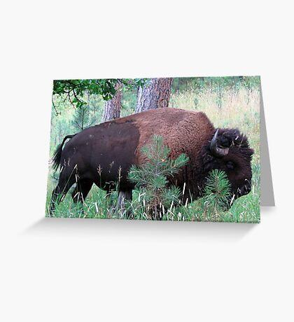 Forest patrol Greeting Card