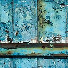 The Painted Door by Barbara Ingersoll