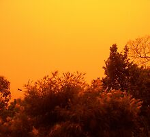 Red dust storm by Barbara Cliff