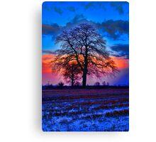 The Winter Tree at Sunrise Canvas Print