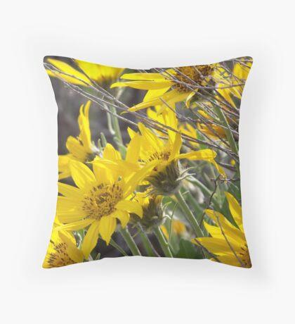 Arrowleaf Balsam Root Throw Pillow
