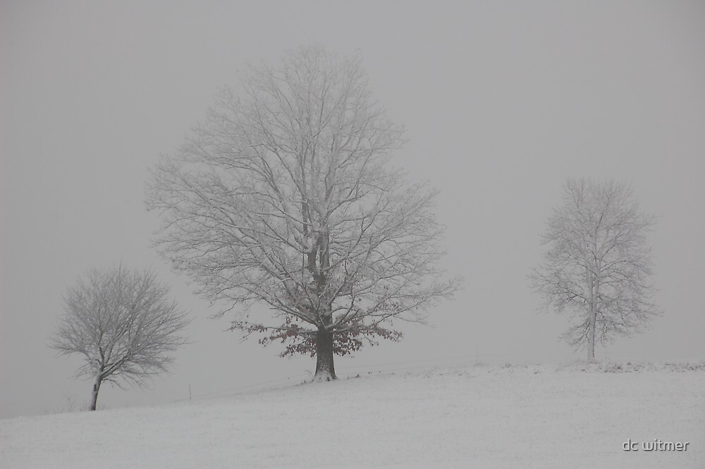winter peace by dc witmer
