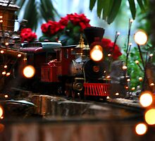 Holiday Train by Amber Williams