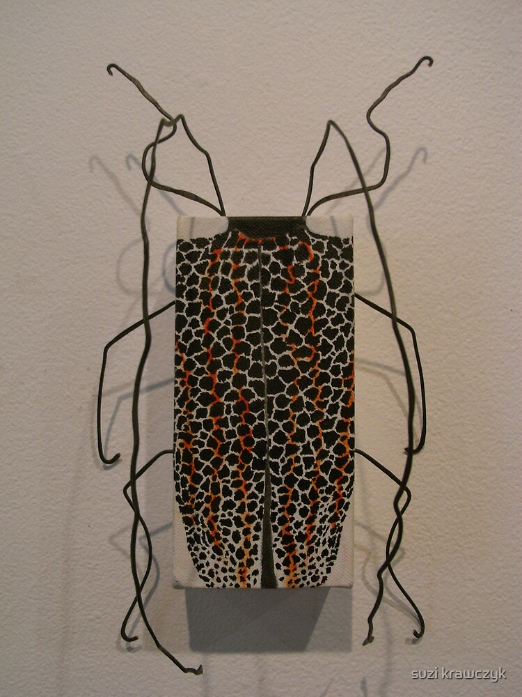 New Guinea beetle-rosenbergia straussi by suzi krawczyk
