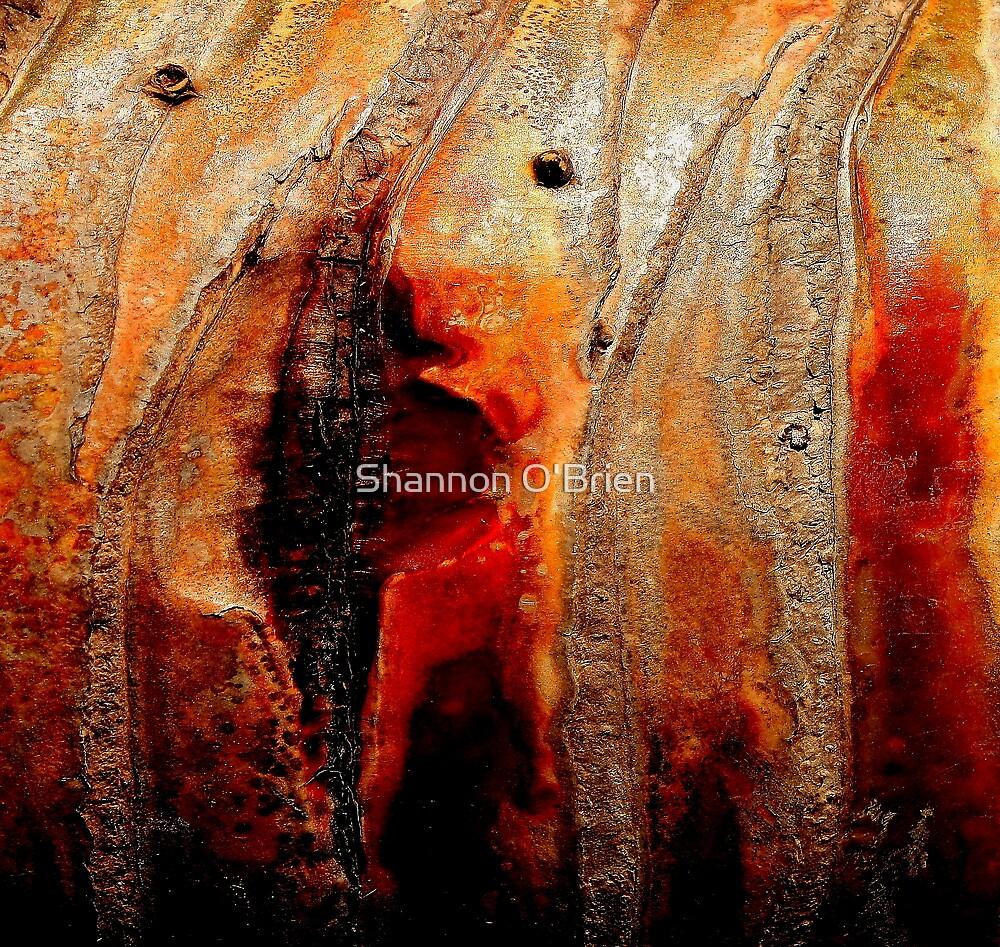 Bleed by Shannon O'Brien