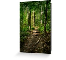 The Hidden Trails of the Old Forests Greeting Card