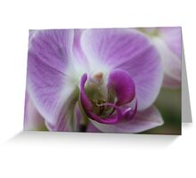 Come into my Purple World - JUSTART © Greeting Card