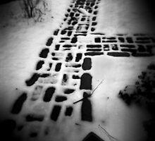 Bricks in Snow by Frank Orzechowicz