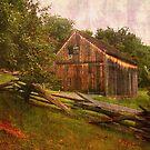 Smallest barn at Burnside Plantation...... by DaveHrusecky