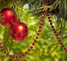 Merry Christmas by Marilyn Cornwell