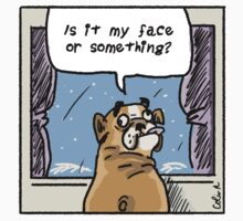 Is it my face? by bulldogdiaries
