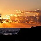 Snapper Rocks Fisherman At Sunrise by WantedImages