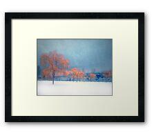 The Winter Blues Framed Print