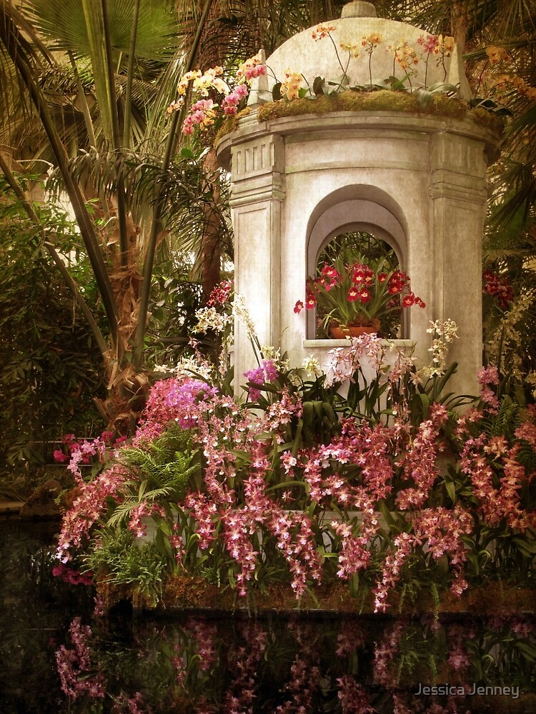Orchid Show by Jessica Jenney