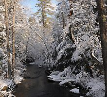 Cascade Brook, New Hampshire by brooke1429