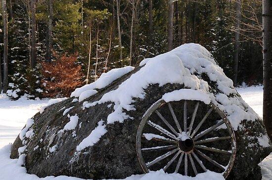 Cascade Brook Farm, New Hampshire by brooke1429
