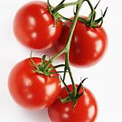 Tomatoes in daylight by PeterBusser