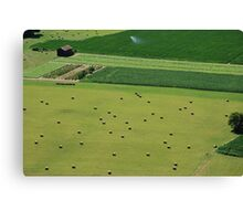 Open Fields Canvas Print