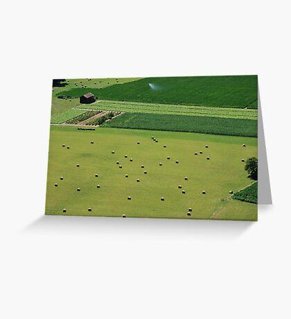 Open Fields Greeting Card
