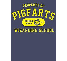Starkid: Pigfarts wizarding school (yellow) Photographic Print
