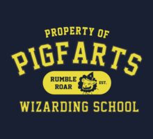Starkid: Pigfarts wizarding school (yellow) by Wipi Oly