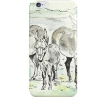 """Donkeys at the lake"" iPhone Case/Skin"