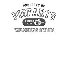 Starkid: Pigfarts wizarding school (grey) Photographic Print