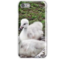 """ And this what all the fuss was about"" iPhone Case/Skin"