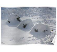 Winter Wonderland -West Virginia USA Poster