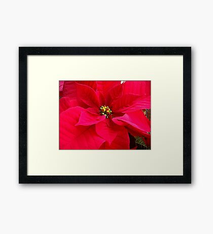 My wishes for a superb Christmas time Framed Print
