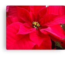 My wishes for a superb Christmas time Canvas Print