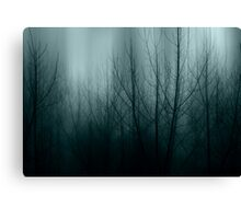 Winter Whispers Canvas Print