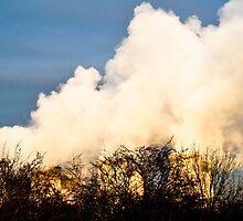 Cloud Machine by daniellesalmon
