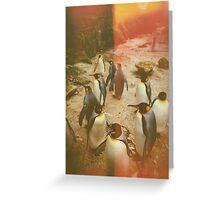 Retro Penguins Greeting Card