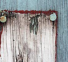 ....nail treatment.... by Lynne Prestebak