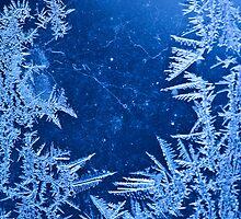 December by gildedtiger