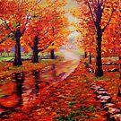 Rainy Maple Road by sesillie