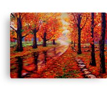 Rainy Maple Road Canvas Print