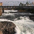 Spokane Falls by Susan Russell
