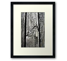 Wooded Graphic Framed Print