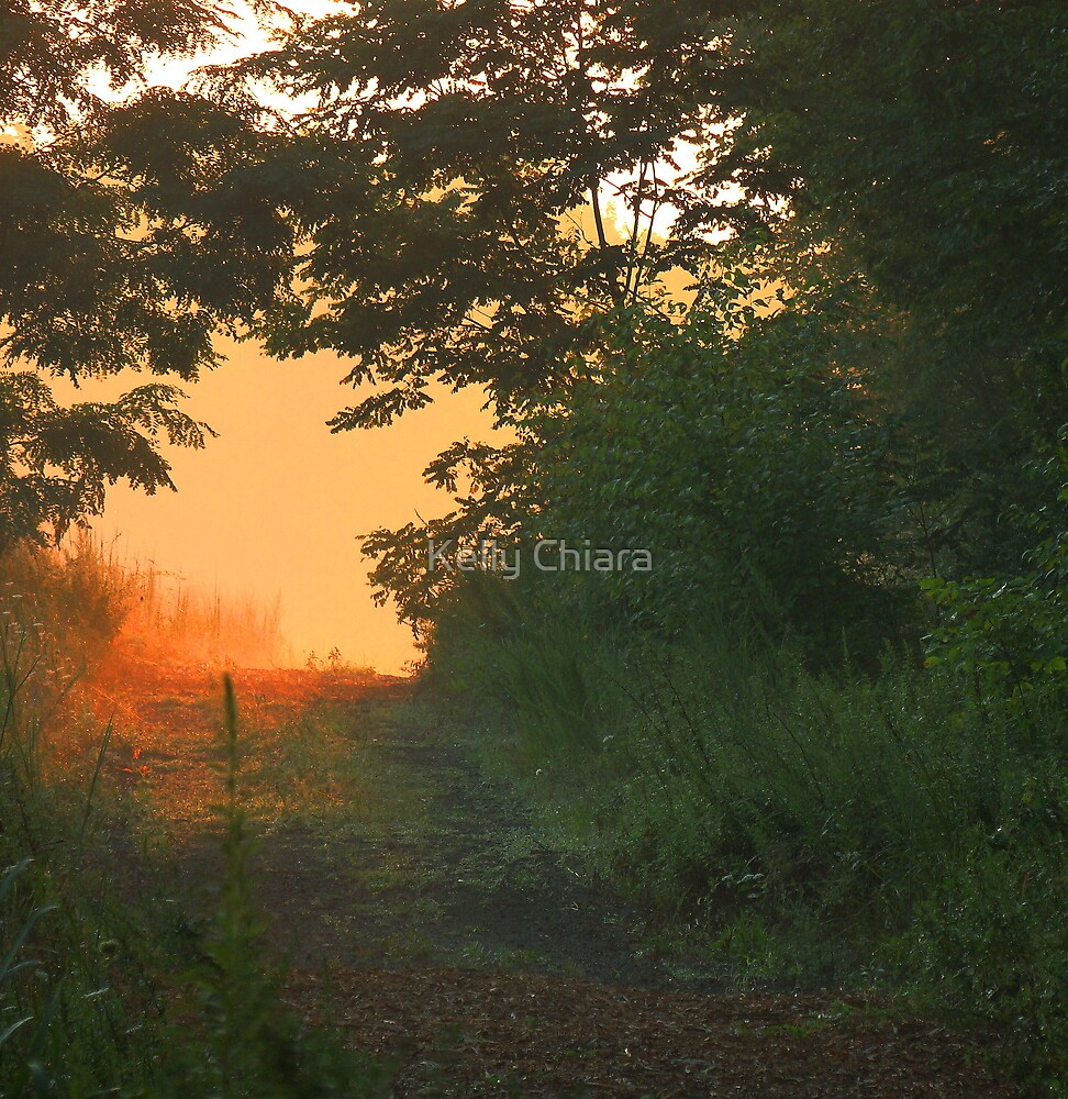 Hazy Summer Morning Path by Kelly Chiara