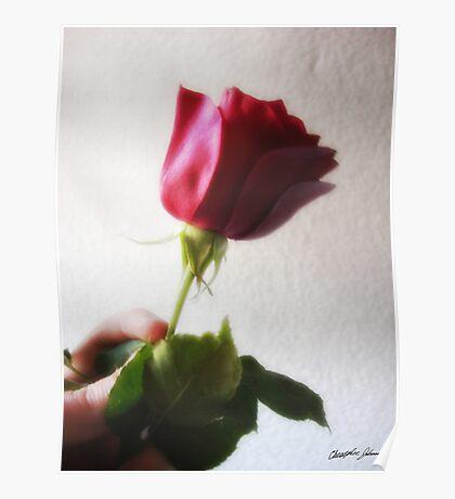 Dark Red Rose - Temptation Poster