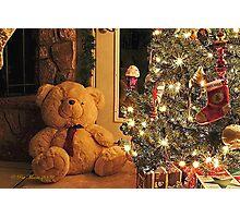 Christmas Teddy Photographic Print