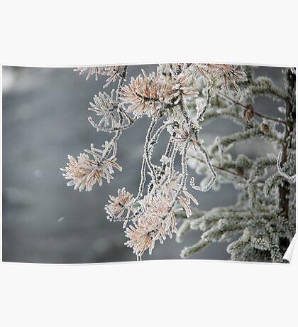Freezing Mist Poster