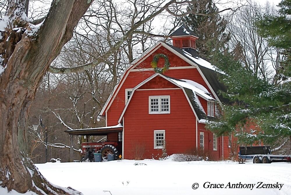 Winter Red by Grace Anthony Zemsky