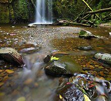 Mariners Falls, Otways National Park, Australia by Michael Boniwell