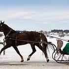 One Horse Open Sleigh by Mark Van Scyoc
