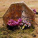 In Memory by Barbara Wyeth