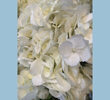Blue Tipped White Hydrangea Flowers Unisex T-Shirt